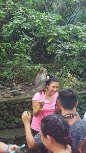 """Friendly"" monkeys."